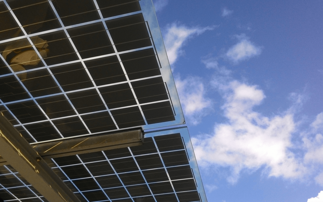How Solar Project Management Software Keeps Businesses Innovative